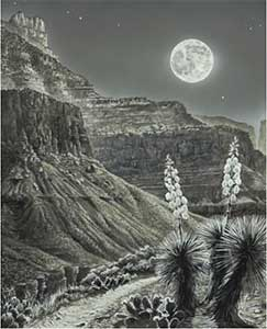 Moonrise over Tonto