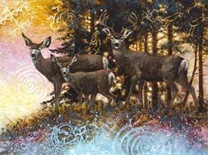 Forest spirits - mule deer