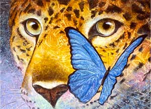 Jaguar and Blue Morpho