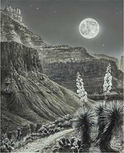 Moonrise over Tonto